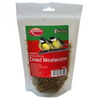 Mealworms - 75g