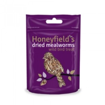 Mealworms - 100g