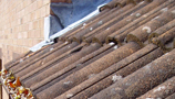 Roofing & Insulation (1)